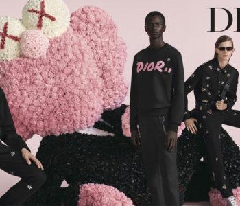 KAWS BFF - Dior Homme